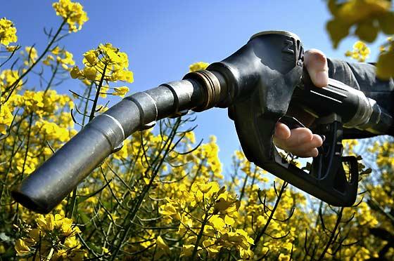La guerre des agrocarburants en Europe prend de l'allure