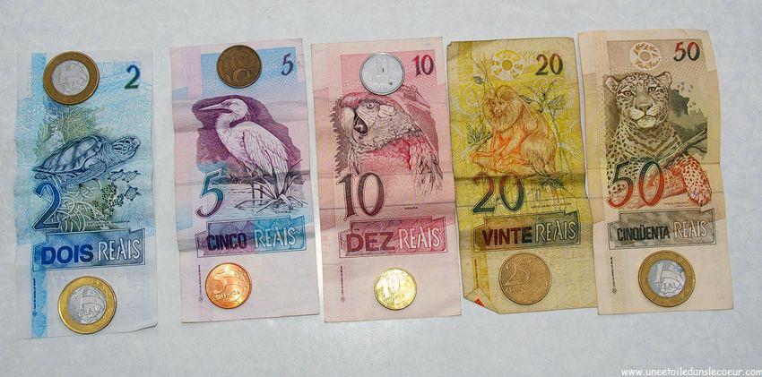 Brésil : programme de soutien à la devise nationale
