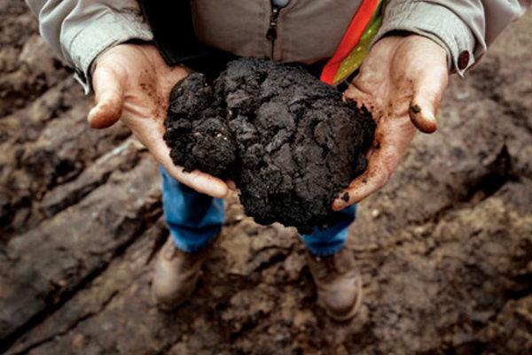 Canada. Consortium pour l'exploitation des sables bitumineux