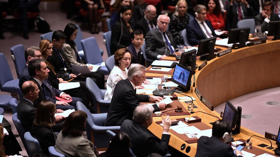 ONU : Le Conseil de sécurité exige un cessez-le-feu durable en Libye