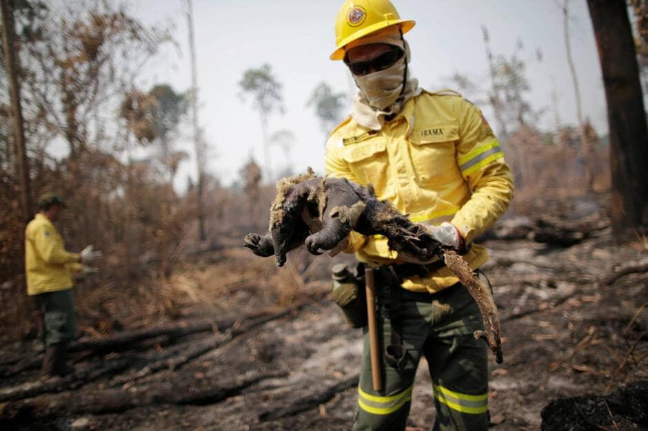 Brésil : Bolsonaro qualifie de «mensonge» les incendies de forêt en Amazonie
