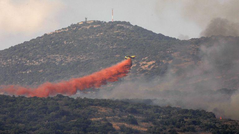 Les feux de forêt qui ont touché le Liban et la Syrie maîtrisés