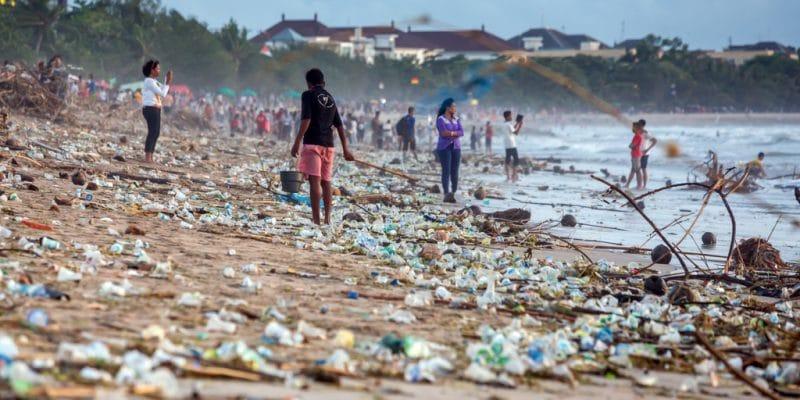 Afrique du Sud: l'environnement