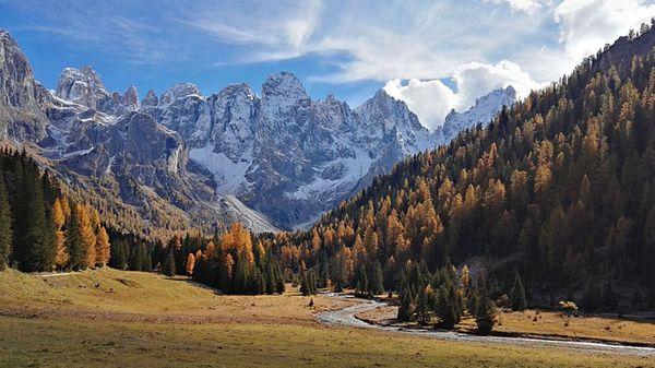 L'Italie: Augmentation de la superficie boisée